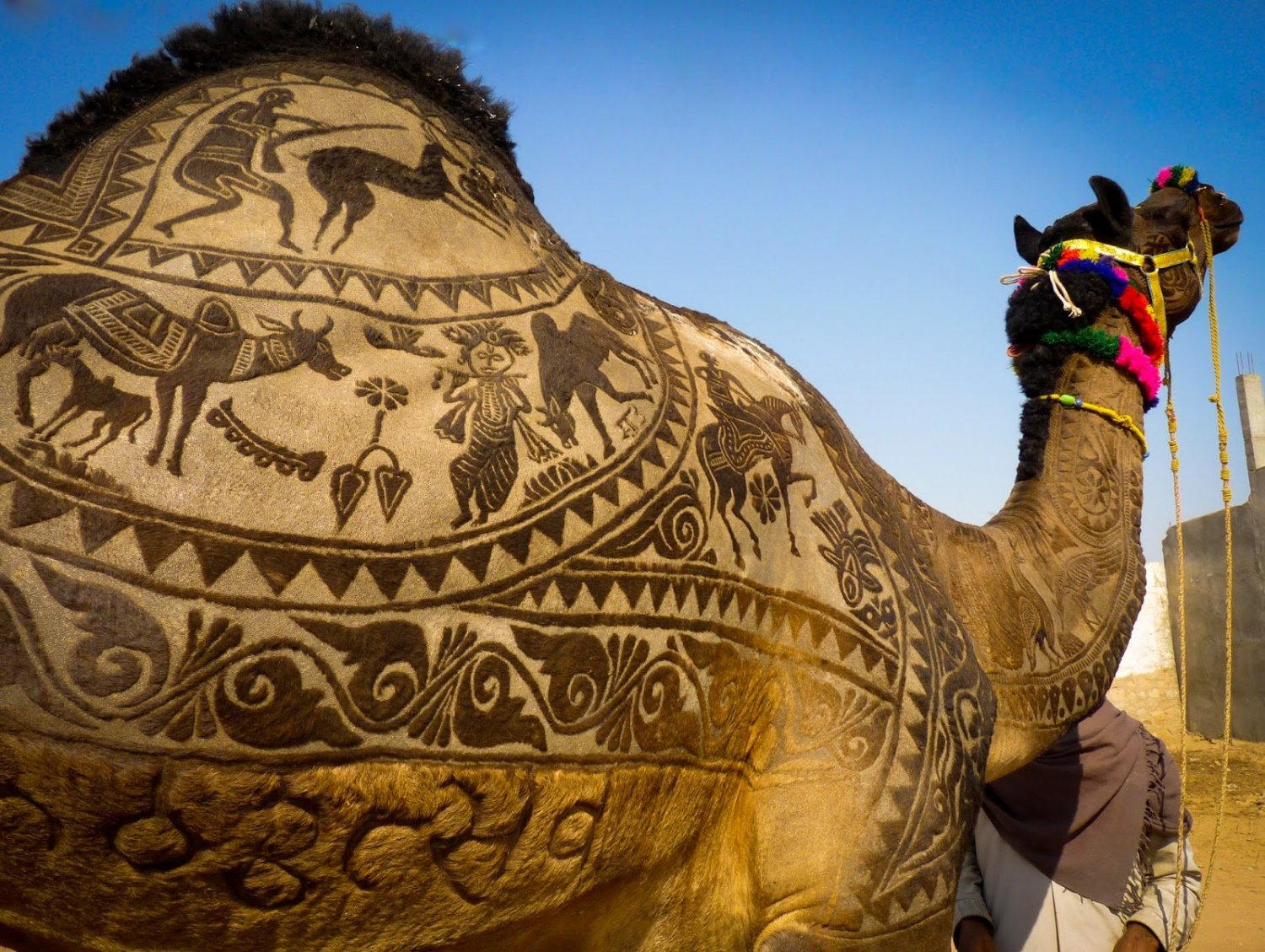 Pushkar-Camel-Fair_2.jpg
